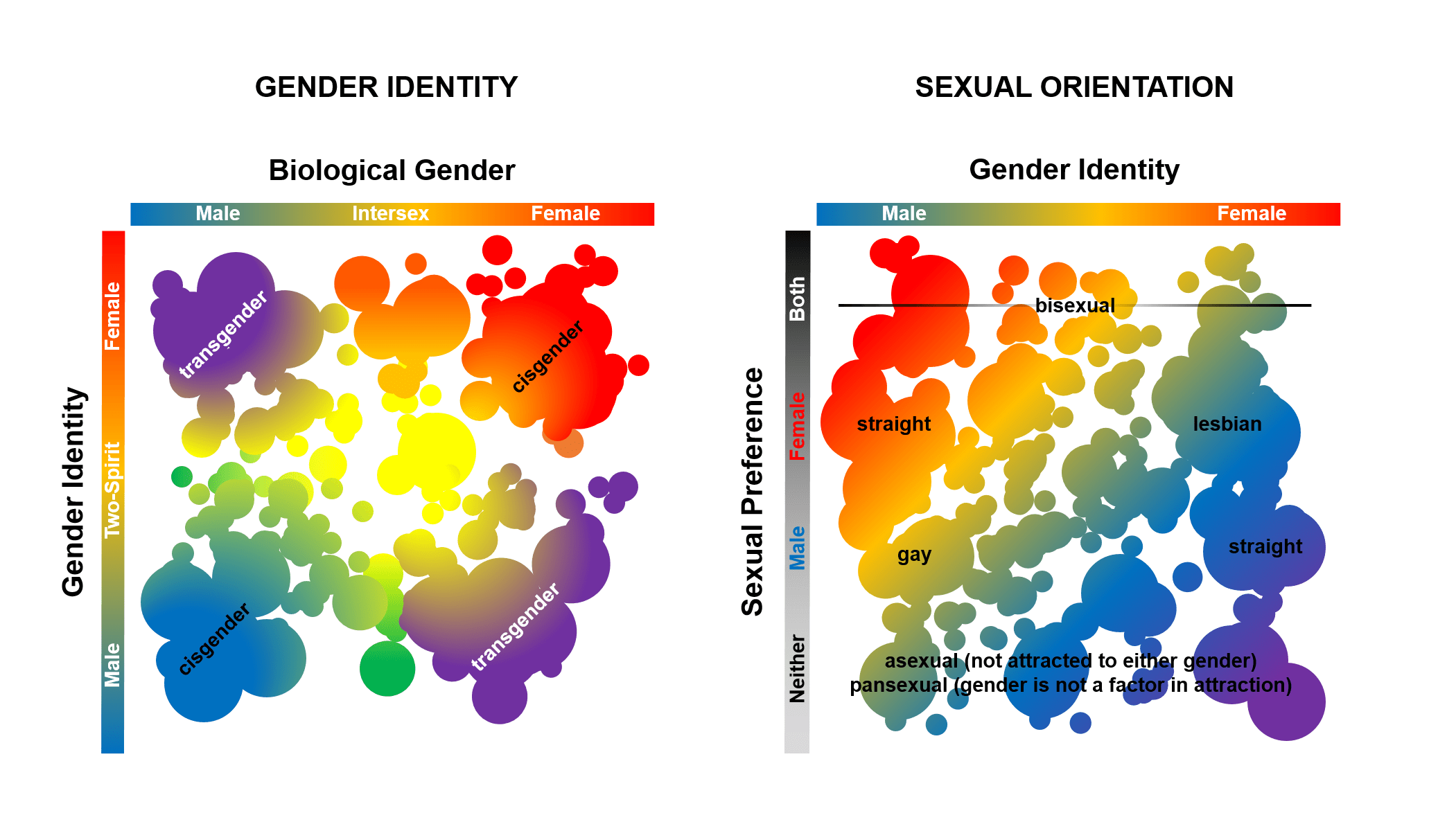 gender_identity_and_sexuality